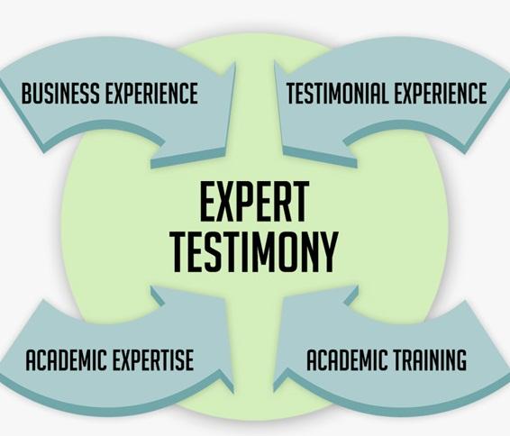 Expert Testimony Graphic